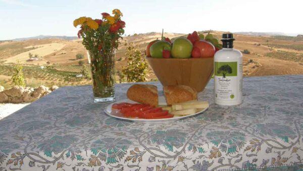 Tostada con aceite de oliva